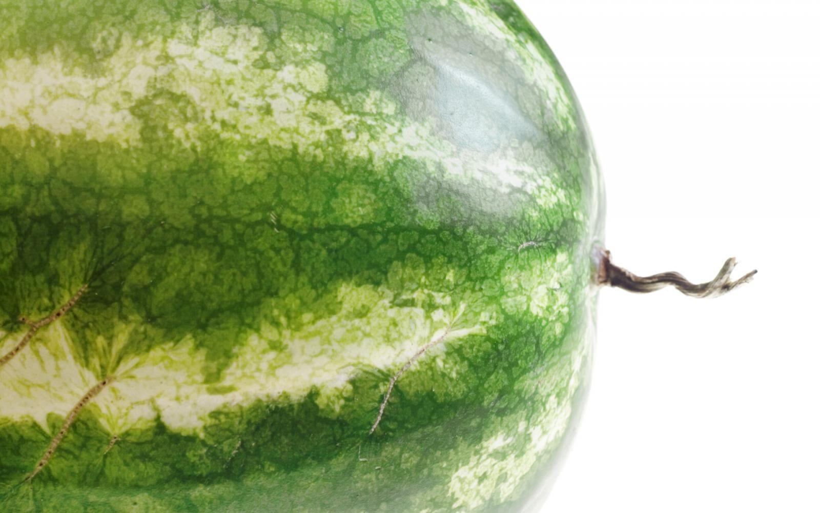 Хвостик арбуза