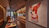 Открытие. Японский ресторан SHIBA