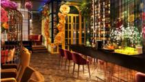 Открытие ресторана Plov Project в Москве
