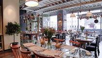 Открытие: кафе «Юлина кухня»