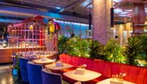 Фейерверк из подарков:  ресторан PLOV Project приглашает отметить 8 Марта