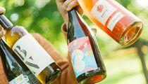 В июле на Некрасова откроется винный ресторан Animals