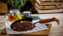 В Москве открылся первый ресторан международного бренда Fire Lake
