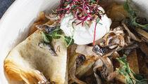 Весенняя коллекция блюд к Масленице в ресторане MODUS