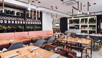 Ресторан Snetki bar & izakaya устроит самурайскую вечеринку