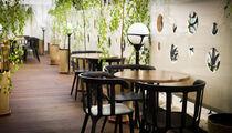Летняя веранда и летнее меню в ресторане «ЦДЛ»
