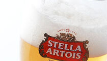 Отборочный тур Чемпионата мира по наливу Stella Artois в ресторане «WhyNot»
