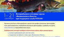 Фоторыбалка в сети фиш-хаусов «Филимонова и Янкель»