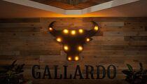 Галлардо