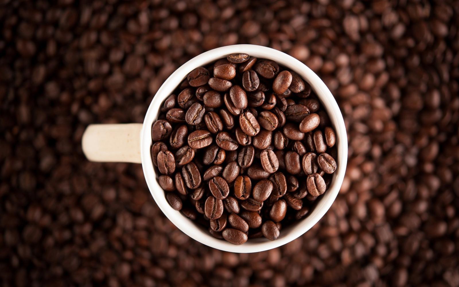 кофейня в москве